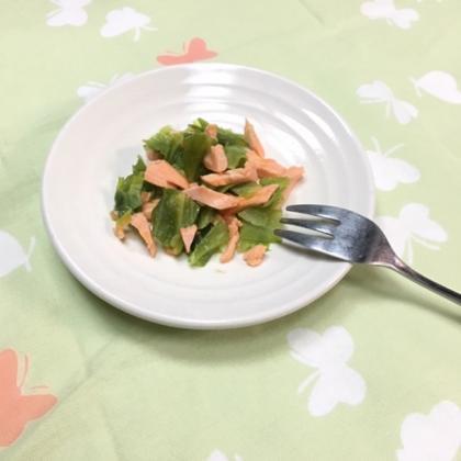 【離乳食完了期】春キャベツと鮭の味噌バター焼き