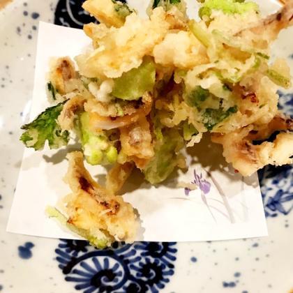 【離乳食完了期】空豆と新ごぼうのかき揚げ焼き