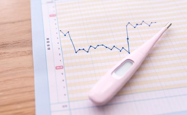 排卵日とは?生理周期との関係と生理予定日からの計算や基礎体温から予測する方法について