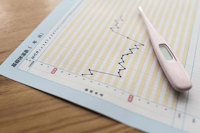 基礎体温で排卵日がわかる?基礎体温の正しい測り方と変化からわかること