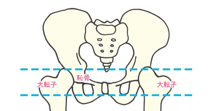 骨盤固定の位置