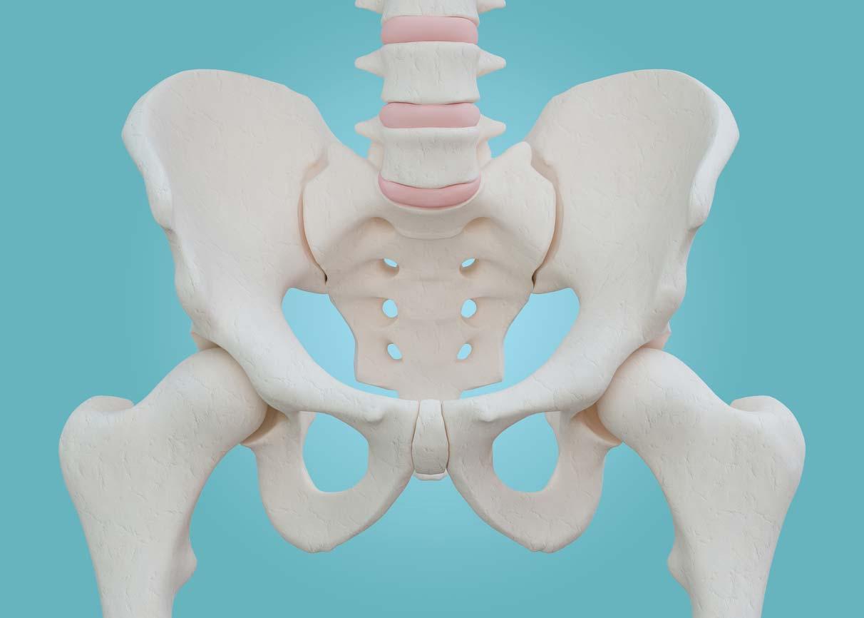 骨盤のゆがみを簡単矯正!骨盤矯正ベルトの種類、効果、使い方について
