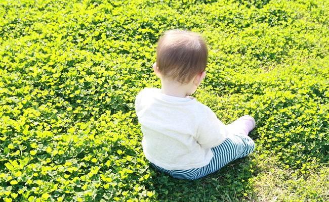 赤ちゃんの公園デビューのイメージ