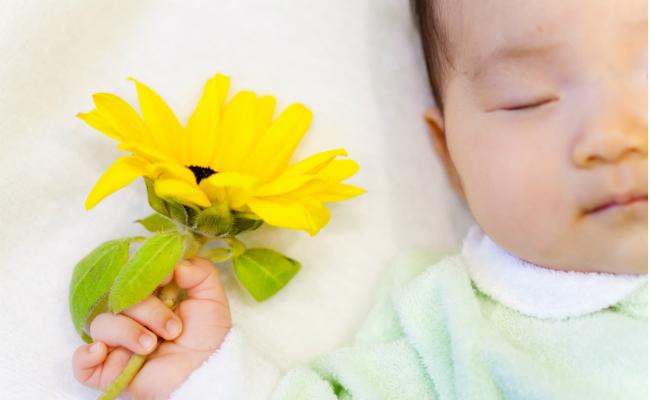 8月生まれの女の子の名づけ名前調査ランキング