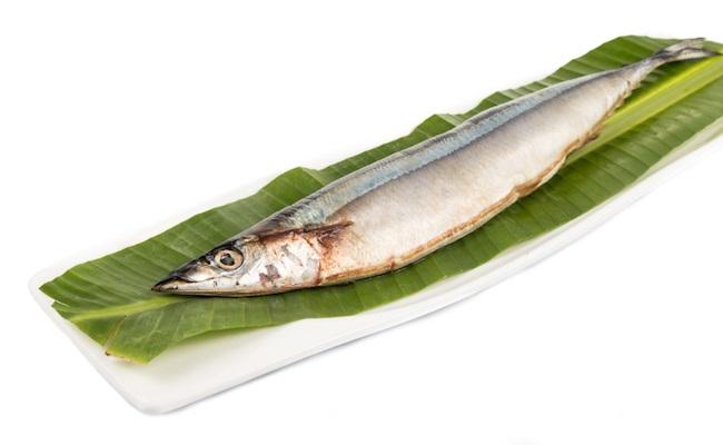 妊婦 食べていいお寿司