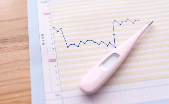 妊娠希望基礎体温計