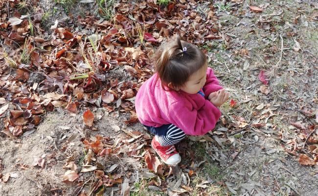 落ち葉と子ども