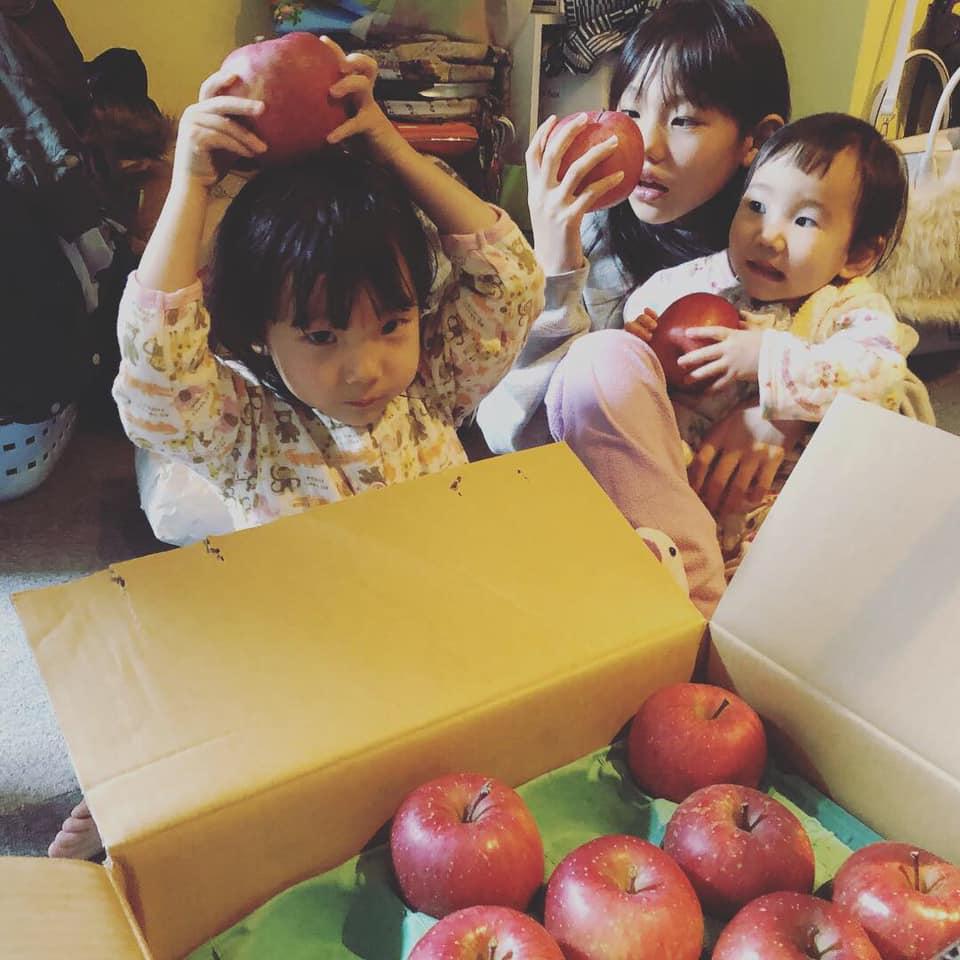 山口紫織さん大家族_りんご