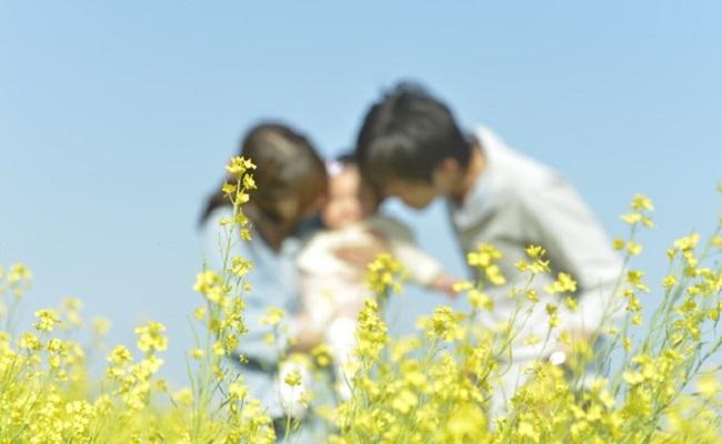 菜の花と赤ちゃんのイメージ