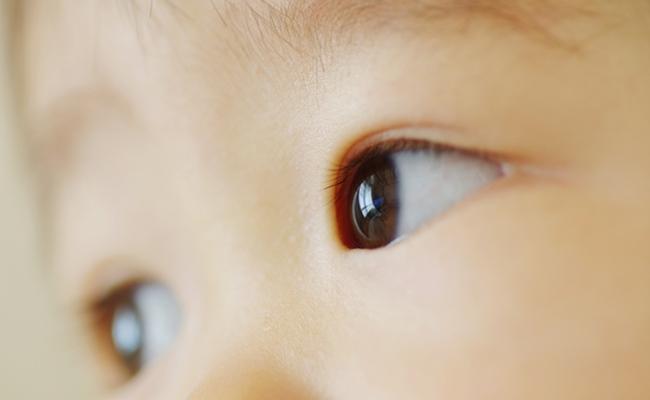 こどもの目のイメージ