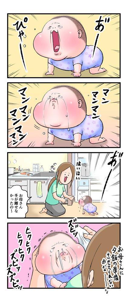 にくきゅうぷにお@nikukyupunio
