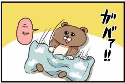 【ねこたぬのはじめて育児24】