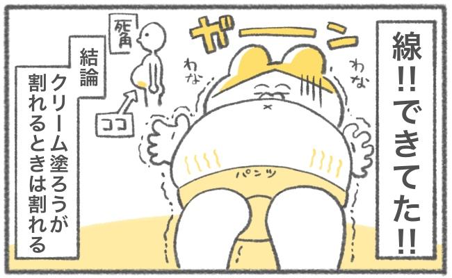 キヨの妊娠記録