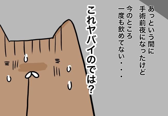 じぇにこ85-4