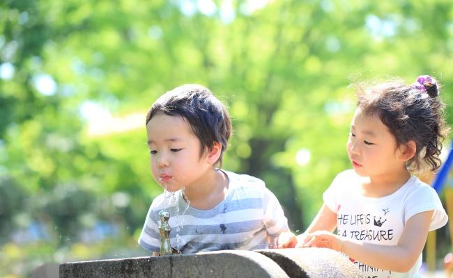 子ども 外遊び 夏