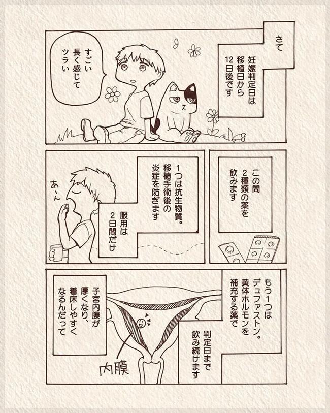 体外受精レポ 第10話