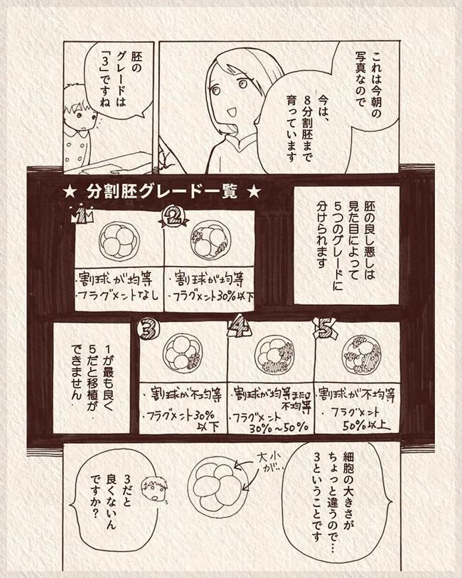 体外受精レポ 第9話