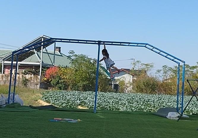 自宅の庭 雲梯