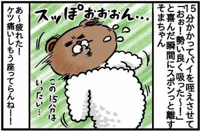 ねこたぬ80_2