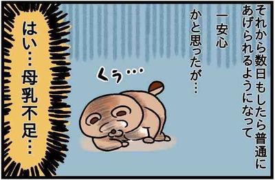ねこたぬ80_4