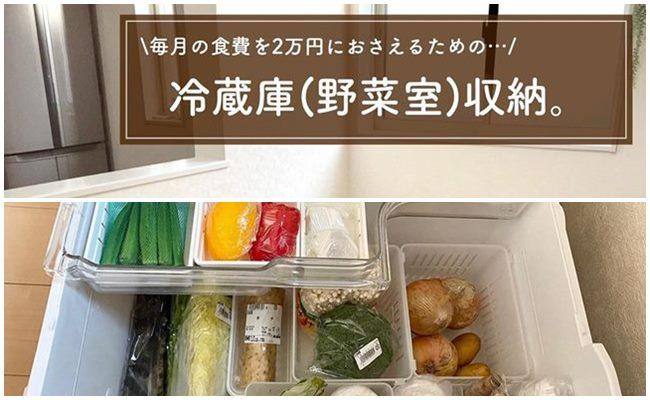 節約野菜室トップ