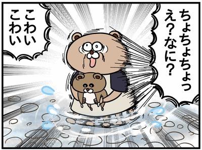 ねこたぬ84_4