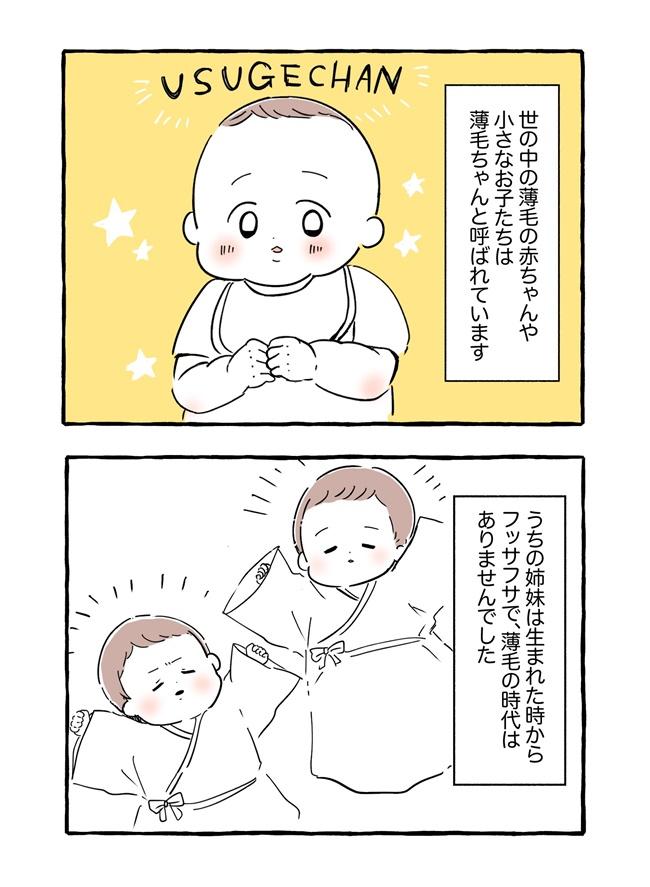 「薄毛ちゃん」の反対語