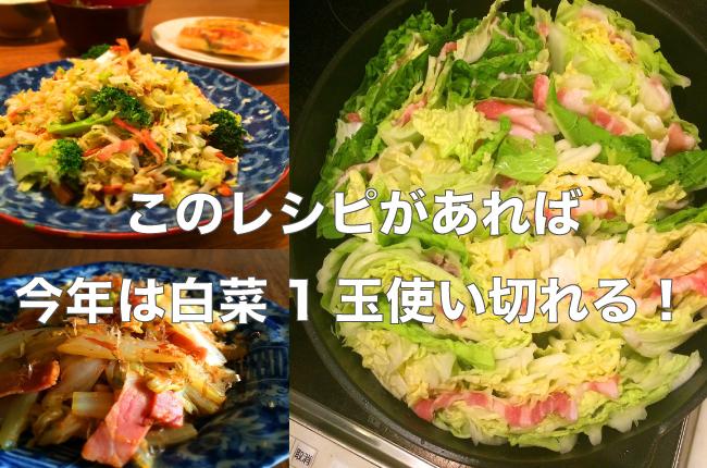 野口さんの白菜レシピの画像