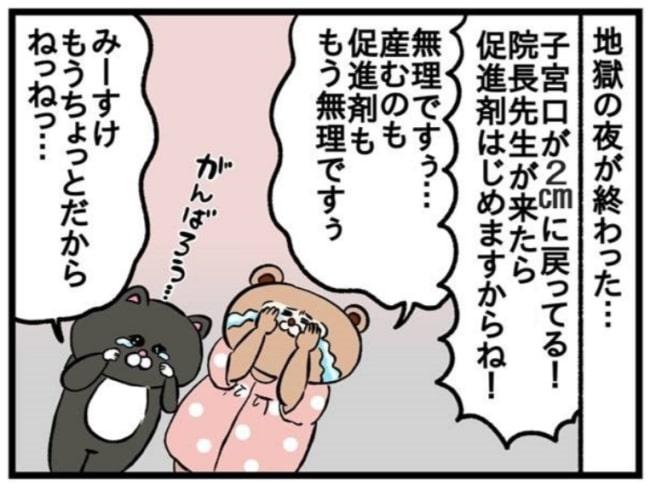 みーすけ11_1