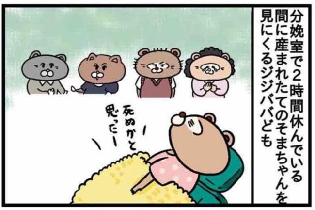 みーすけ12_3