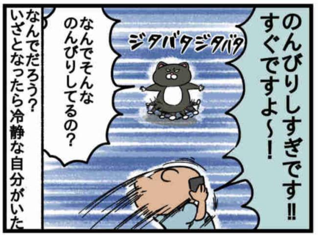 みーすけ5_4