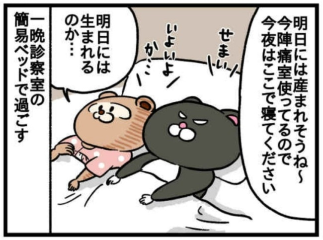 みーすけ6_5