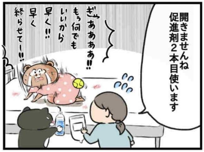 みーすけ8_2