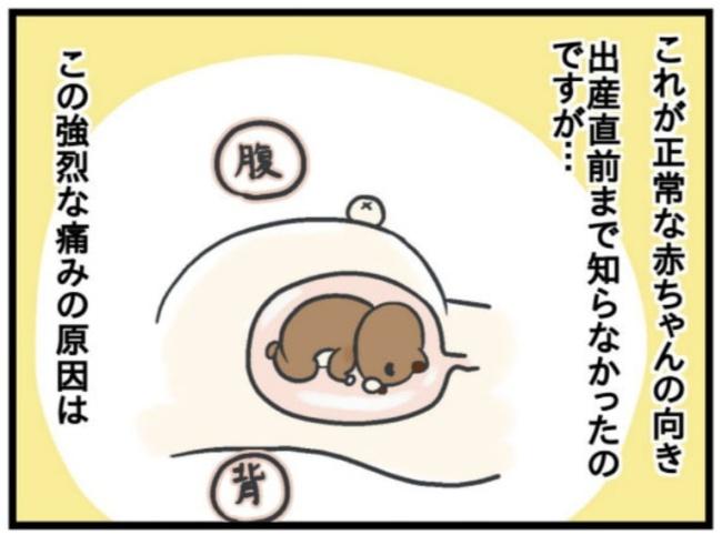 みーすけ8_5