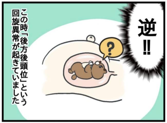 みーすけ8_6