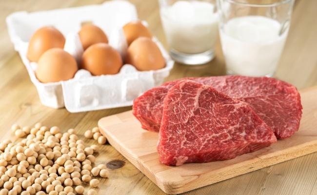 お肉 タンパク質