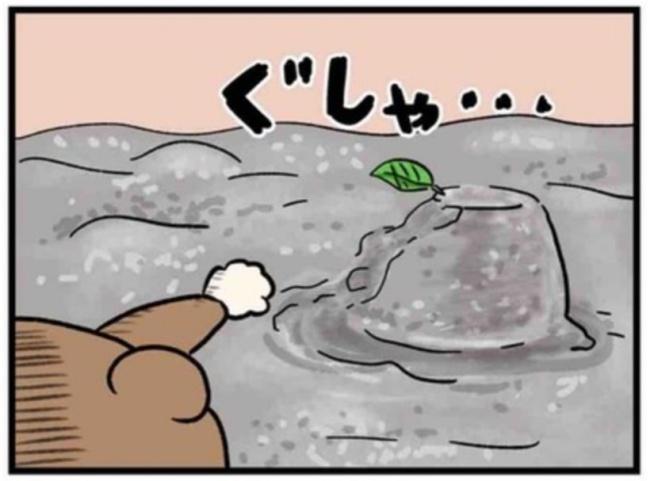 ねこたぬ50_7