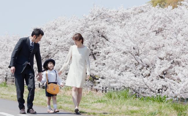 入園の記念写真どうする?桜の開花に合わせたセルフ撮影で大満足!【体験談】