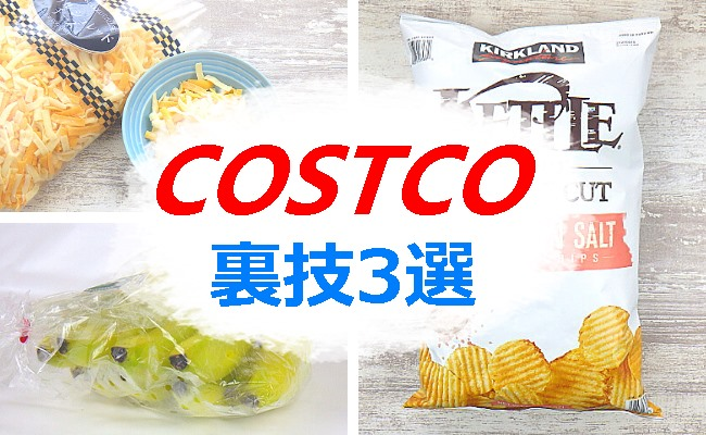 costcohozon-top