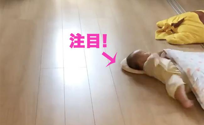 新競技「背ばい」3カ月級日本代表