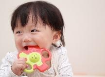 歯が生え始めるころの不機嫌を解消!?安心して使える「歯がため」3選