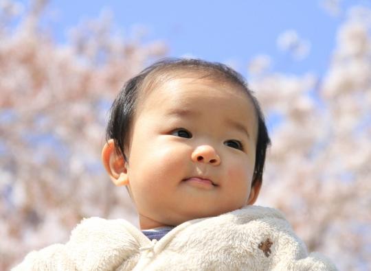 「サクラネーム」が増加!人気の名前は?3月生まれ女の子の名前TOP10
